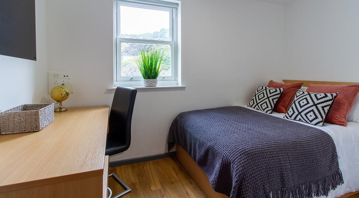 student accommodation single ensuite at student accommodation aberystwyth