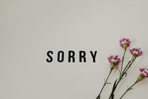 phrases in english for sorry