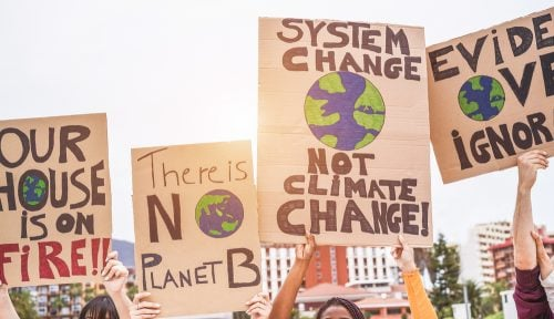 How to help climate change as a student