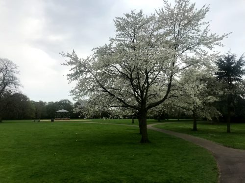 Boultham Park Walk